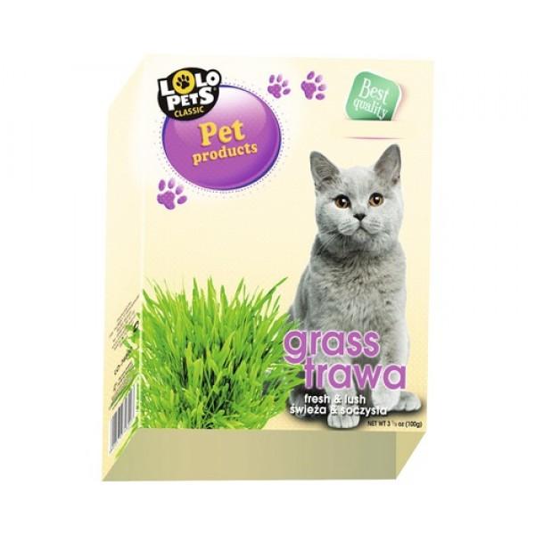 Iarba pentru pisici, LOLO, 100gr