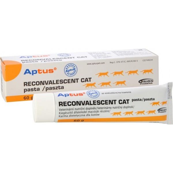 Aptus Reconvalescent Cat Vet Pasta 60 gr