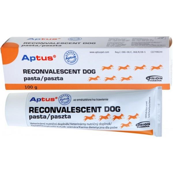 Aptus Reconvalescent Dog Vet Pasta 100 gr